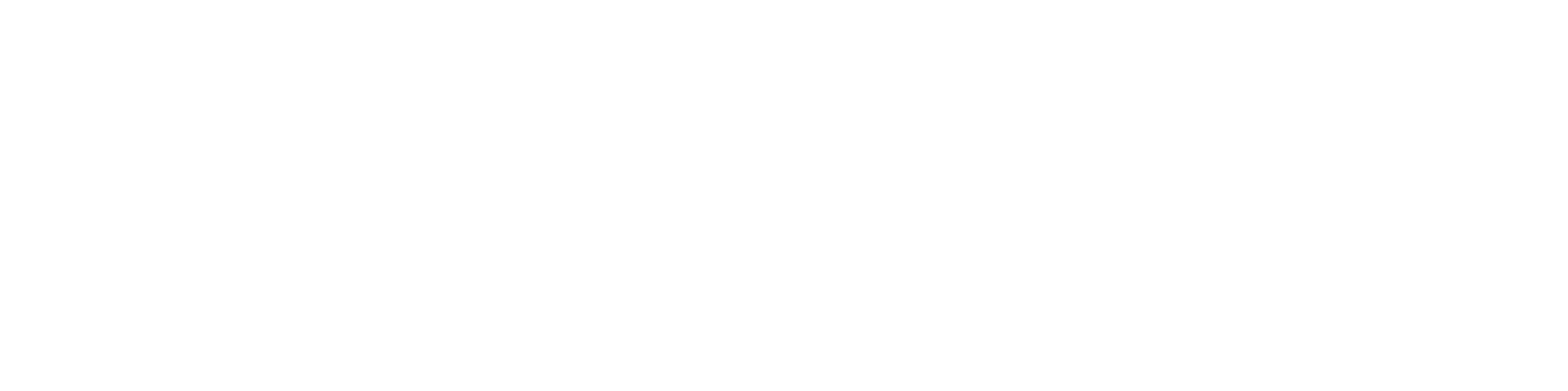 Sistema FIEMT